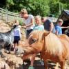 Sommerprogramm für Groß und Klein