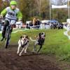 Triathlon für Hund und Mensch