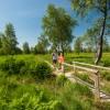 Gutachten sieht großen Bedarf an digitaler Besucherlenkung in Naturregionen