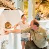 """Johannistag im Nationalpark-Zentrum Eifel – Ausflugstipp für 23. und 24. Juni: Erlebnisausstellung """"Wildnis(t)räume"""""""