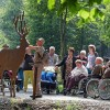 """Barrierefreies Naturerleben bei internationaler Fachmesse Düsseldorf – """"Wildnis(t)räume"""" des Nationalparks Eifel  präsentiert sich mit Bestnoten auf Rehacare"""