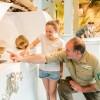 """Sonderführung für Kinder in der Erlebnisausstellung """"Wildnis(t)räume"""" im Nationalpark-Zentrum Eifel"""