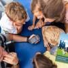 Familienerlebniskarte zum Familienabenteuer Rheinland-Pfalz erschienen
