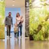 """Frühling im Zentrum: Biene, Buche, Bergmolch & Co. – Führung im Nationalpark-Zentrum Eifel durch die Ausstellung """"Wildnis(t)räume"""""""