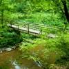 Brückensanierung: Lieserpfad und Eifelsteig teilweise gesperrt