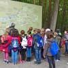 Raus ins Museum!  Mitmachen und Erleben im LVR-Freilichtmuseum Kommern