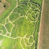 Irrgarten Spaß – Naturlabyrinth Lausberg öffnet am Samstag, 6. Juni