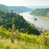 Rheinland-Pfalz bewertet relevante Auslandsmärkte