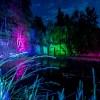 Neuer Termin für die Veranstaltung Leuchtendes Mayener Grubenfeld