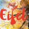 """ENDLICH EIFEL Lese-Event """"Lichter der Eifel"""" auf dem Krewelshof"""
